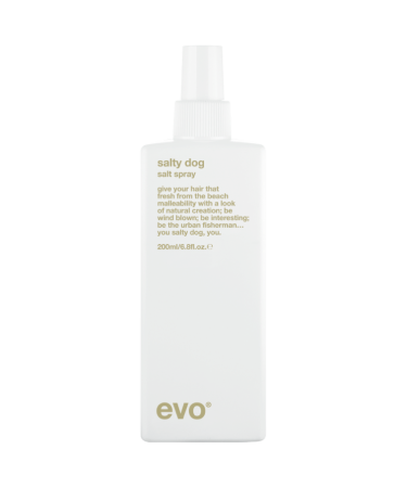 Текстурирующий спрей Evo Salty Dog Salt Spray